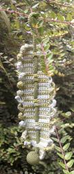 hpim3568.JPG